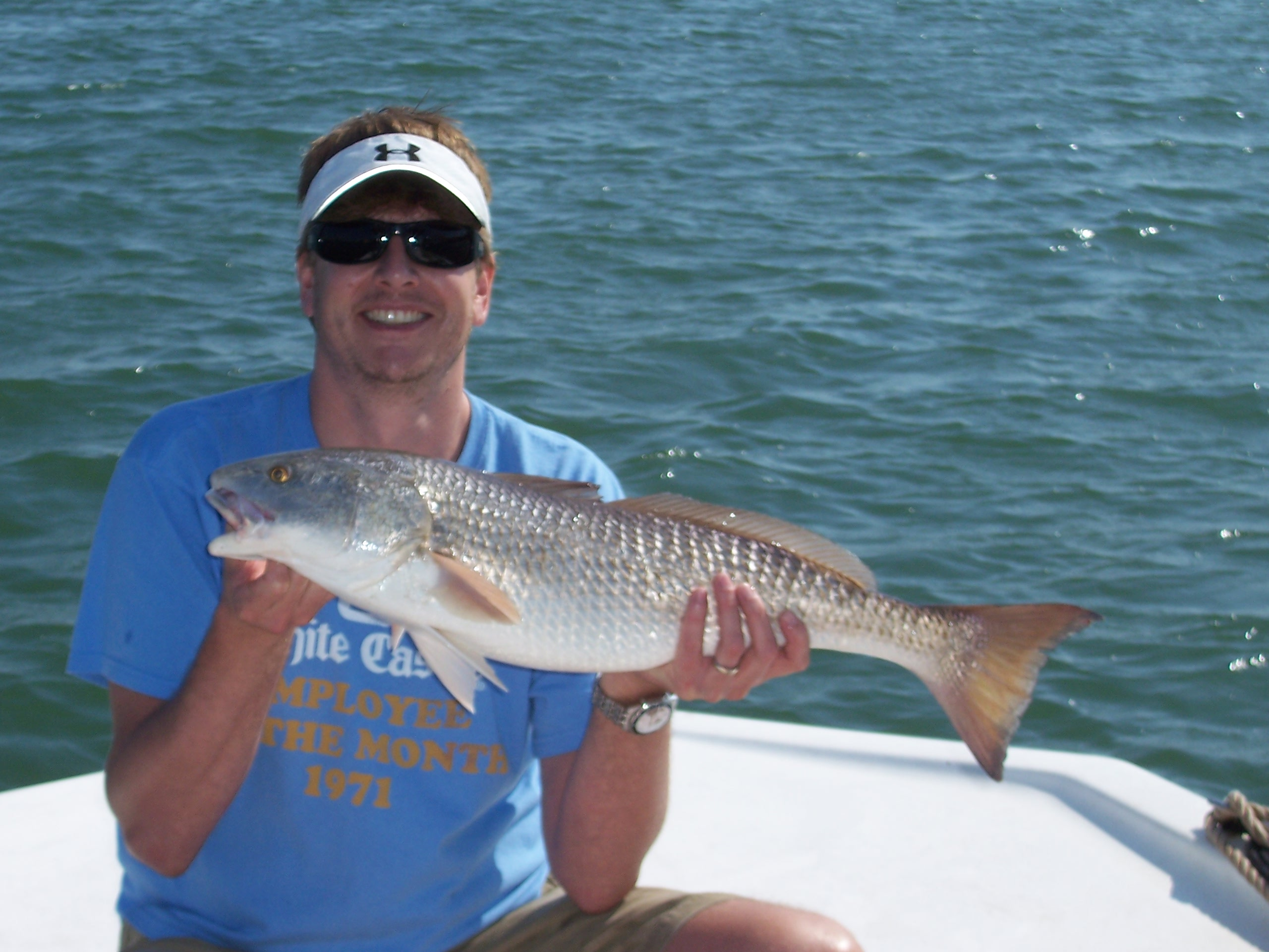 sarasota florida fishing report rodbender fishing